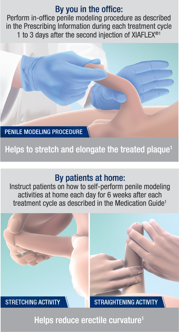 By you in the office: Perform in-office penile modeling procedure as described in the Prescribing Information during each treatment cycle 1 to 3 days after the second injection of XIAFLEX® (1). By patients at home: Instruct patients on how to self-perform penile modeling activities at home each day for 6 weeks after each treatment cycle as described in the Medication Guide (1).
